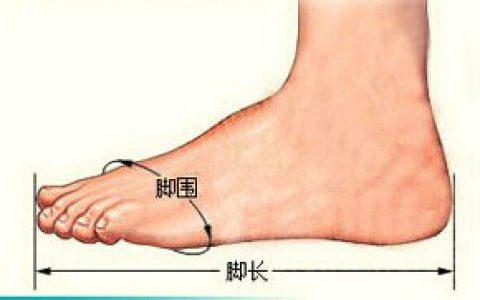 鞋子尺码对照表_鞋子尺码换算_美国鞋子尺码_英国鞋子尺码